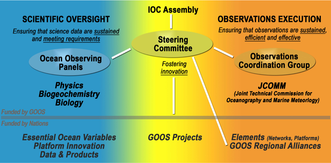GOOS management structure